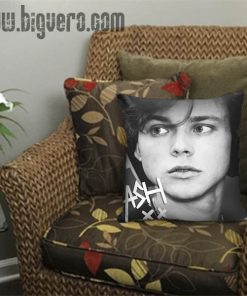 Ashton Irwin 5SOS Pillow Cover