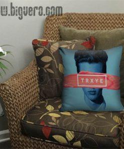 Trxye troye sivan Pillow Cover