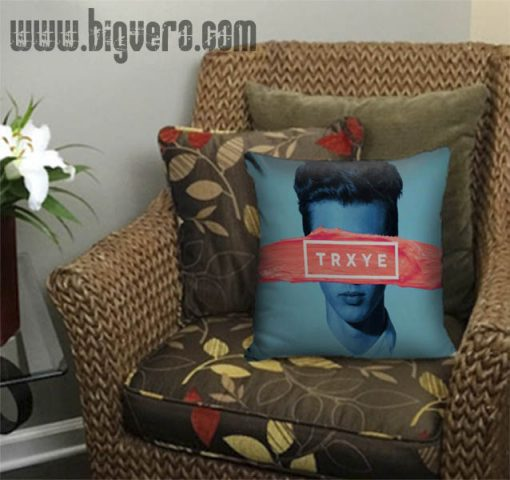 Trxye troye sivan Pillow Cover